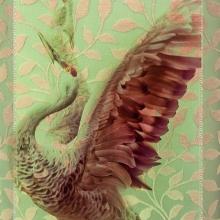 Winged Dancer