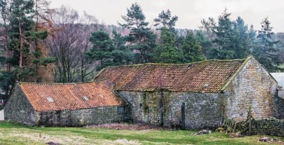 England - Walk Across the Moors to Lastingham -7079