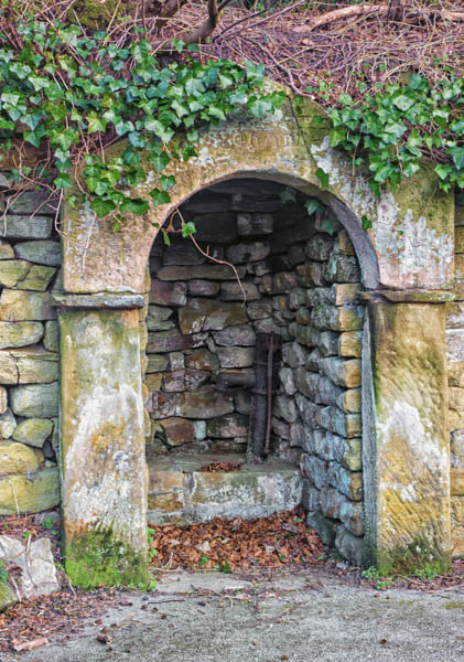 England - Walk Across the Moors to Lastingham -7114
