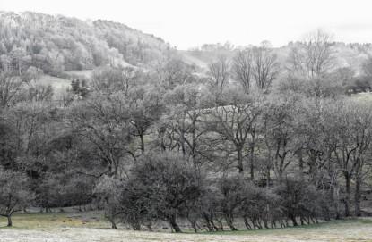 England - Walk Across the Moors to Lastingham -7120