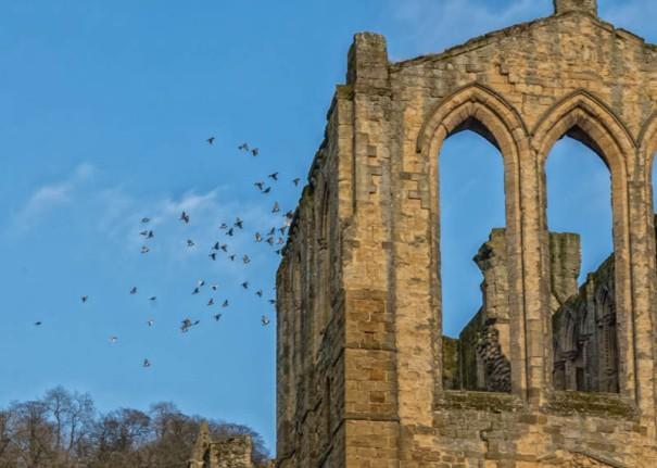 England - Rievaulx Abbey Ruins - 6926