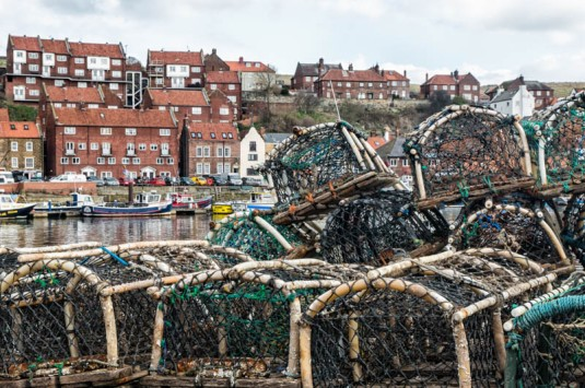 England - Whitby, North Yorkshire - 6976
