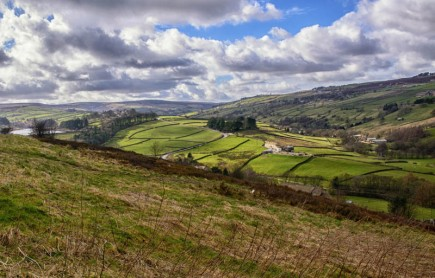 England - Yorkshire Dales -7268