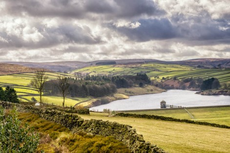 England - Yorkshire Dales -7275