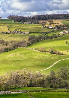 England - Yorkshire Dales -7278