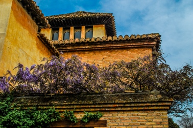 Alhambra: The Sultan's Palace