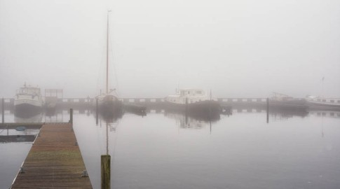 Foggy Day in Vinkeveen - 5790