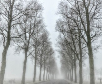 On the Road to Weesp - 5844