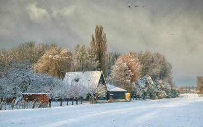 Snowy Day Near Maarsen - 5922