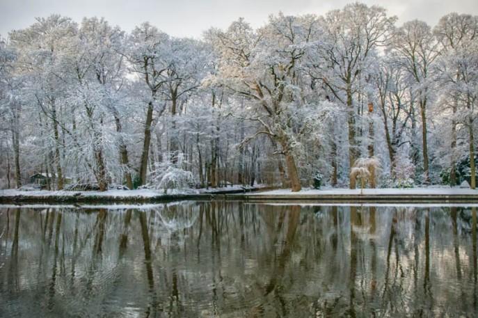 Snowy Day Near Maarsen - 5930