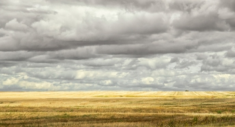 A Cloudy Day on the Prairie