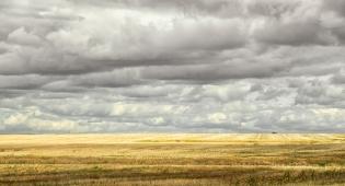 After the Harvest Saskatchewan