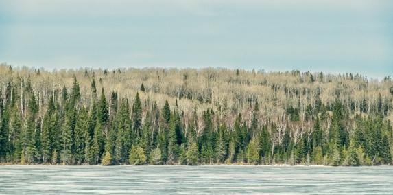 North of Lake Superior